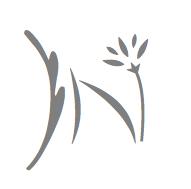 institut naturo esthétique albi